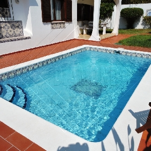 Charming Portuguese Detached Villa 4 bedrooms, pool, garage and annex REF 403